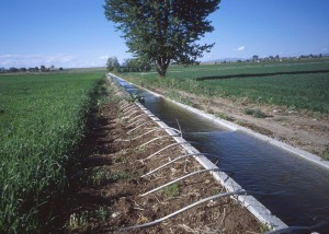irrigation_siphon_tubes-usda_sm