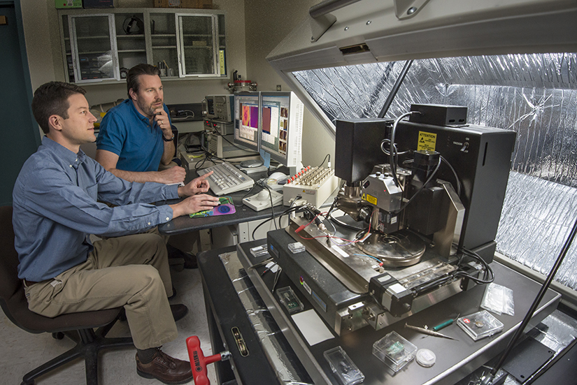 Sandia researchers Jon Ihlefeld (nearer) and David Scrymgeour use an atomic-force microscope to examine changes in a material's phonon-scattering internal walls, before and after applying a voltage. The material scrutinized, PZT, has wide commercial uses. (Photo by Randy Montoya)