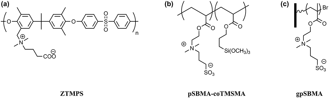 Structures of the zwitterionic coatings synthesized for this study.