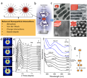 Pressure modulates balanced interactions in self-assembled nanoparticle arrays (a), enables formation of 1-3 dimensional nanostructures (c). In-situ structural (d,e) and optical (f) interrogation show correlation and consistency with phase transition processes (e,g) and formation of the nanostructures (c).