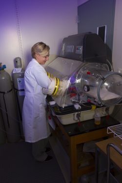 Photo of researcher conducting testing in the geochemistry lab.