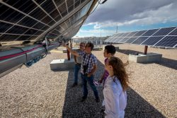 Photo of four researchers under rows of solar panels.