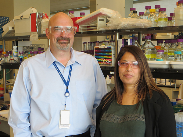 Blake Simmons and Seema Singh of the Joint BioEnergy Institute (JBEI).