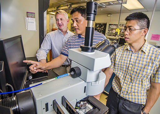 Sandia researcher Hongyou Fan, center, points out a nanoscience result to Sandia paper co-authors Paul Clem, left, and Binsong Li. (Photo by Randy Montoya)