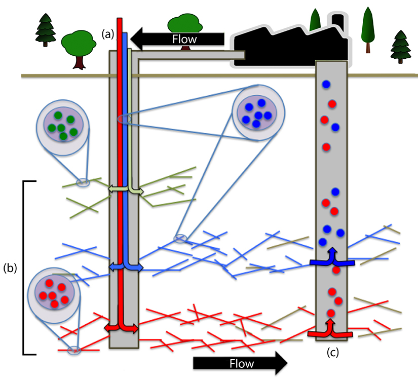 (a) A fractured well. (b) Fractured zones loaded with unique tagged nanoparticles inside the proppant. (c) Tagged nanoparticles released from each zone over time. Above-ground sampling will be analyzed for the tagged nanoparticles. This diagram indicates: no flow from green zone, medium flow from blue zone, high flow from red zone.